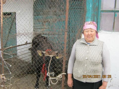 photo of Chinara
