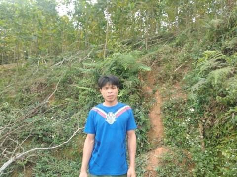 photo of Sự