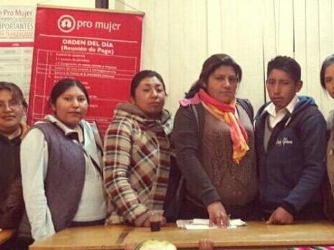 photo of Flor De Tihuanaku Group