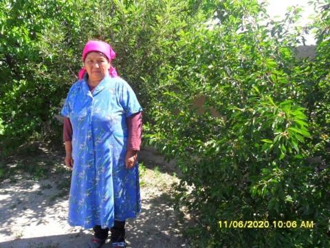 photo of Sainyzhamal