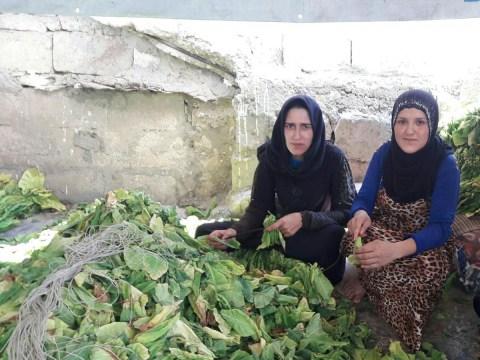 photo of Sakhr Group