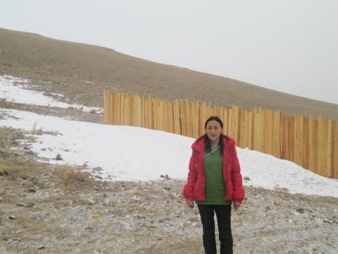 photo of Tumenjargal
