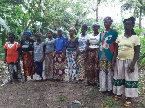 photo of Isatu's Best Female Farmers Group