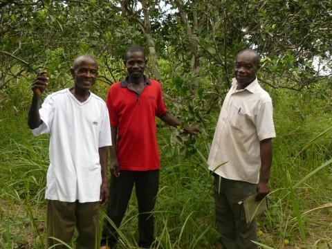 photo of 1-Acre Farm Group