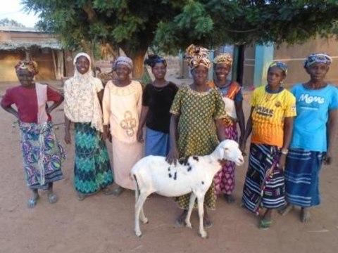 photo of Sabounyouman Group