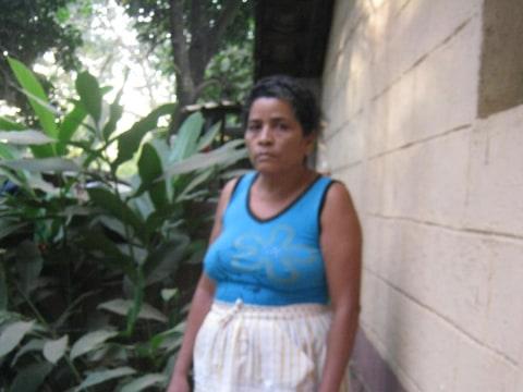 photo of Rosa Candida