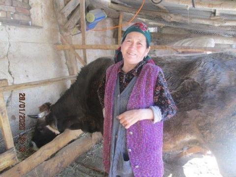photo of Kaliyma