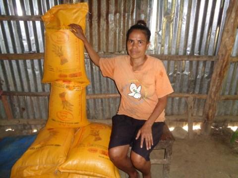 photo of Pulquira