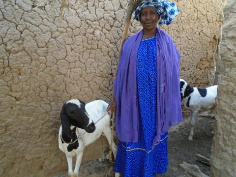 photo of Yeredeme N1 Group