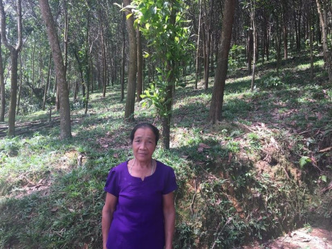 photo of Lanh