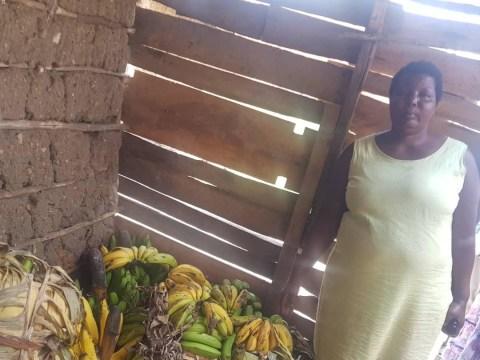 photo of Zowena