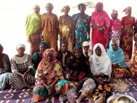 photo of 06_Ngadji Group