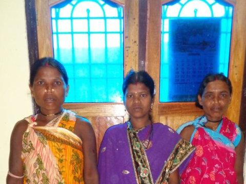 photo of Maa Raudi Devi Shg-A Group