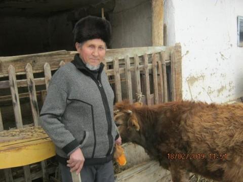 photo of Zhudomush