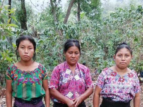 photo of Grupo Patzite Las Magdalenas Group