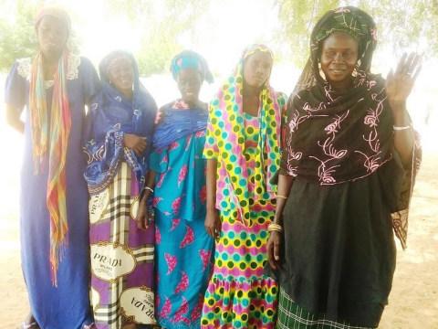 photo of 01_Ndemene Group