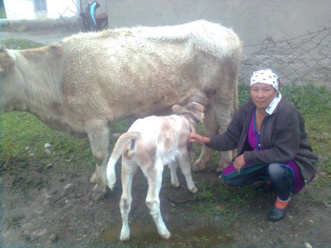 photo of Mairambu