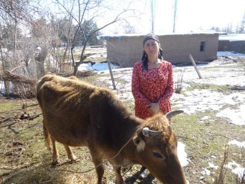 photo of Khursandoy