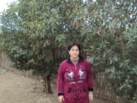 photo of Malahat