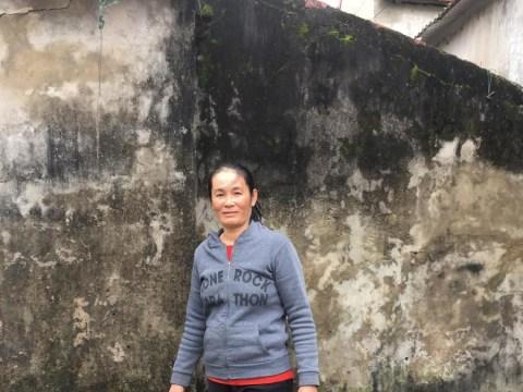 photo of Vien