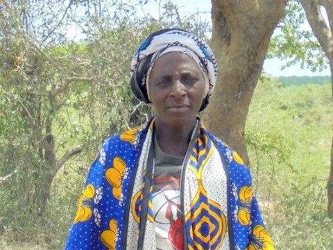 photo of Mlongo