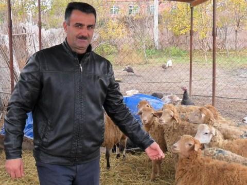 photo of Xanlar