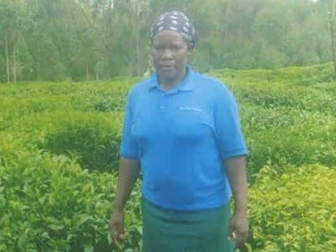 photo of Rodha