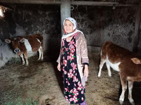 photo of Buburoziya