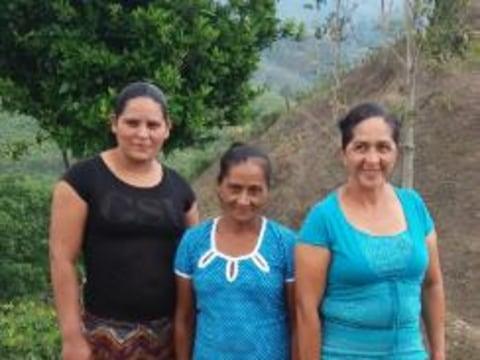 photo of La Única Esperanza- Maquengues Group