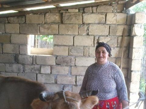 photo of Safayat