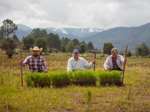photo of El Cerrito De Ucareo Group