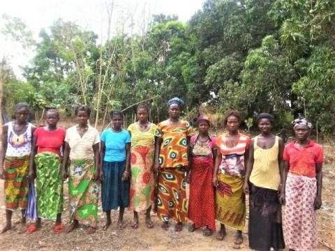 photo of Bantamu's Best Female Farmers Group