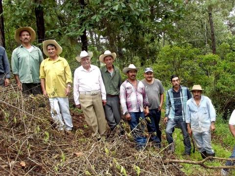 photo of Resineros De San José De Cañas Group