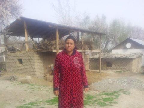 photo of Shukrona