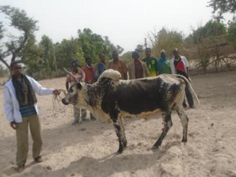 photo of Bnkadi N°2 Group