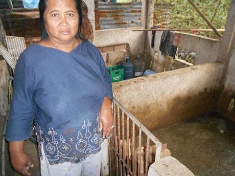 photo of Mildreda