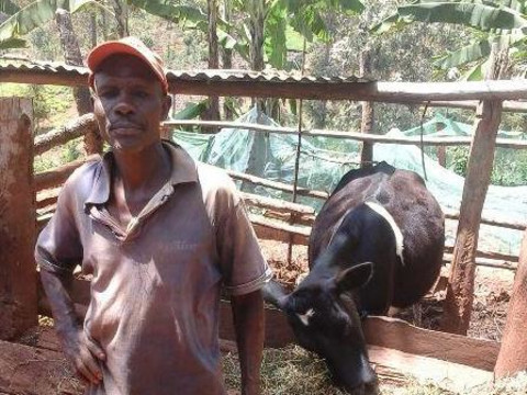 photo of Mucunku