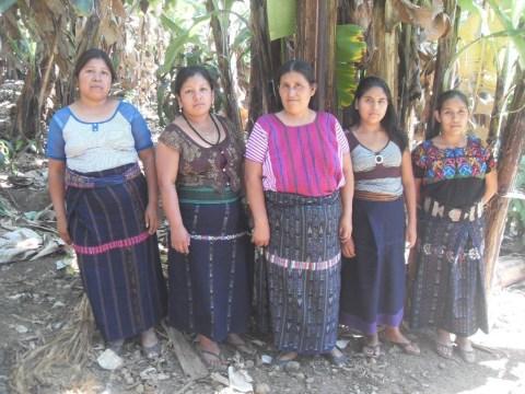 photo of Grupo Xojola Nuevo Group