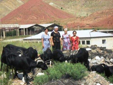 photo of Parida's Group