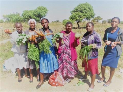 photo of Tazviita Isu Group