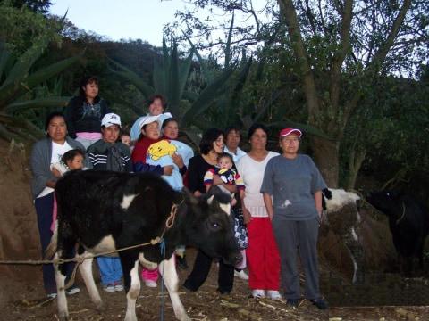 photo of El Esfuerzo De San Felipe Group