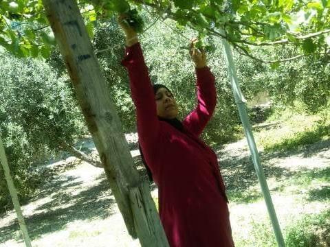 photo of Rahmeh