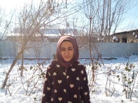 photo of Safarbii
