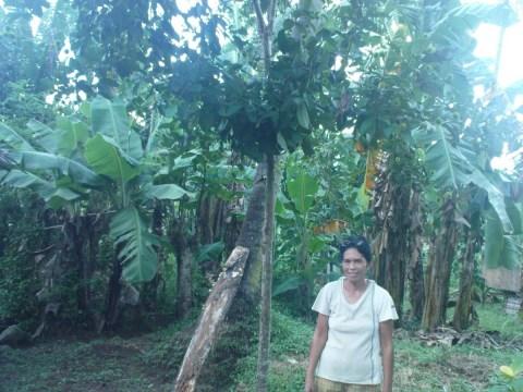 photo of Esterlita
