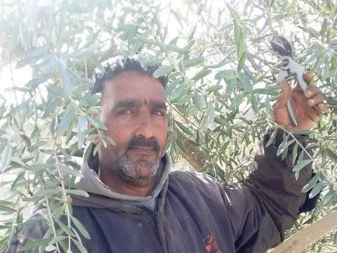 photo of Meqdad
