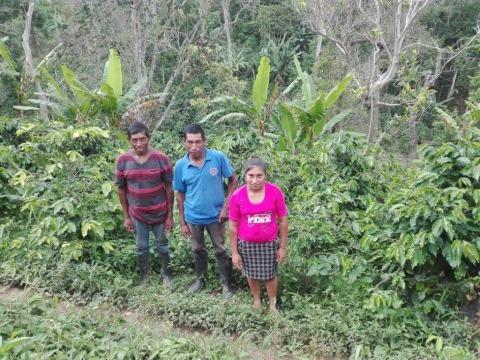 photo of G.s Agricultores La Laguna Group