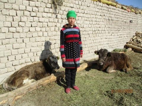 photo of Arsygul