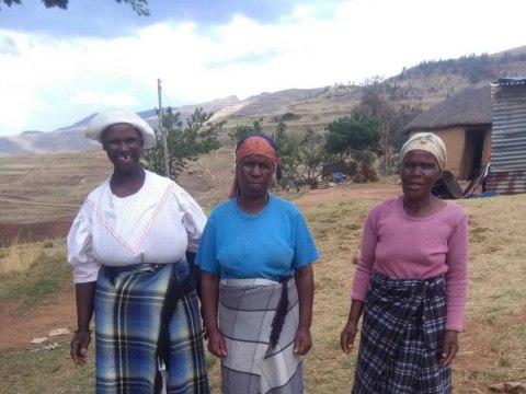 photo of Haseapi Group