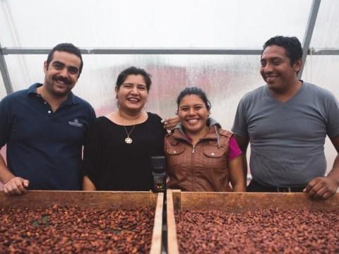 photo of Agrofloresta Mesoamericana