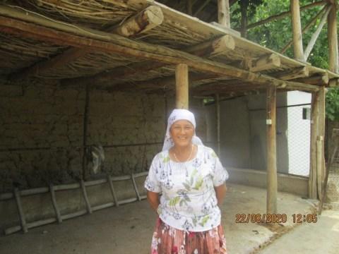 photo of Nasipkan